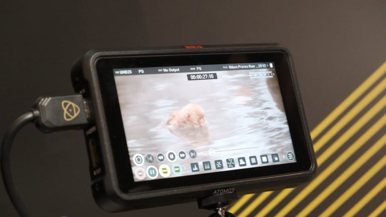 CES-Atomos-and-Nikon-develop-ProRes-Raw-with-HDMI-out-to-Ninja-V-768x432.jpeg