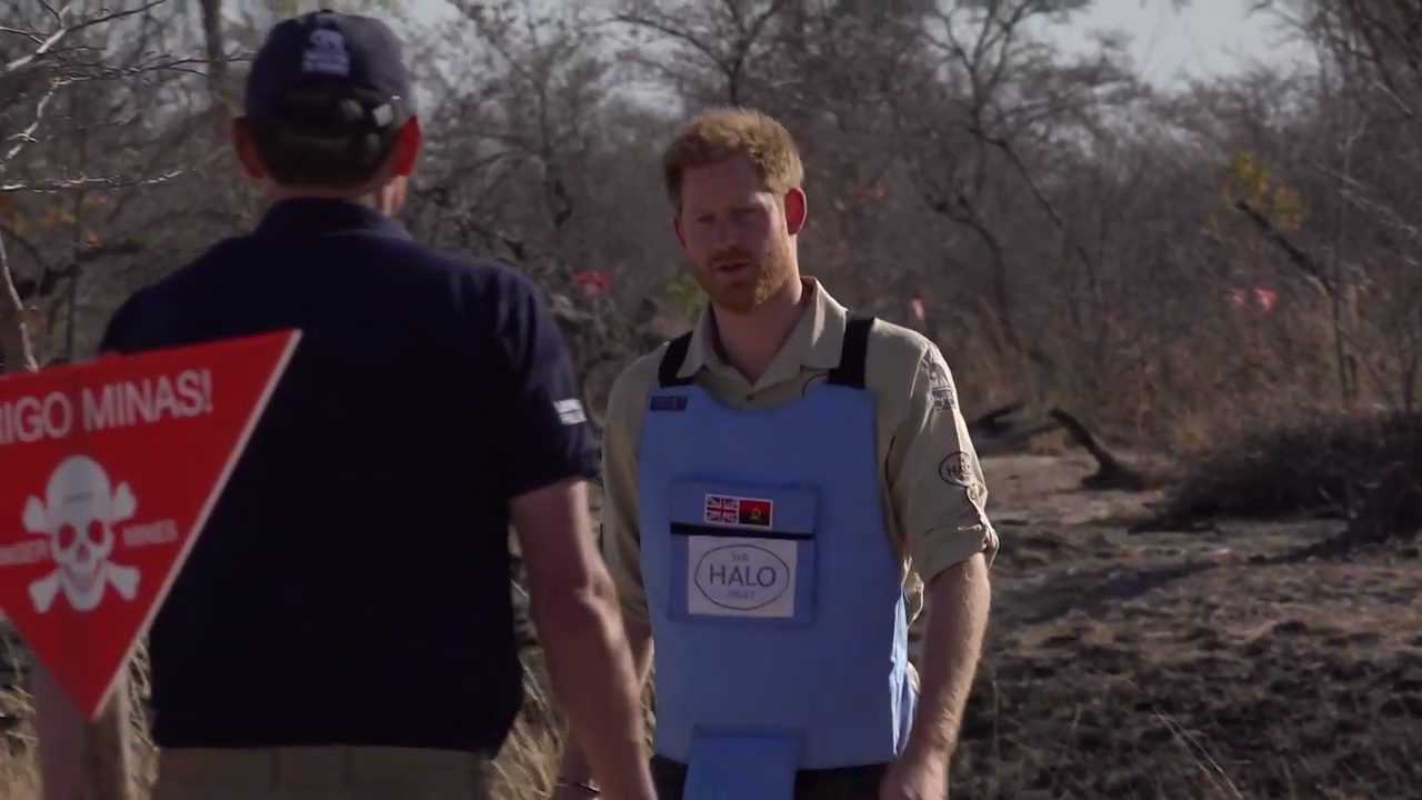 The Royal tour of southern Africa, 2019- Some of my shots on the Sony Z90.mp4 - .png